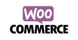 Woocommerce Wordpress Ecommerce Platform